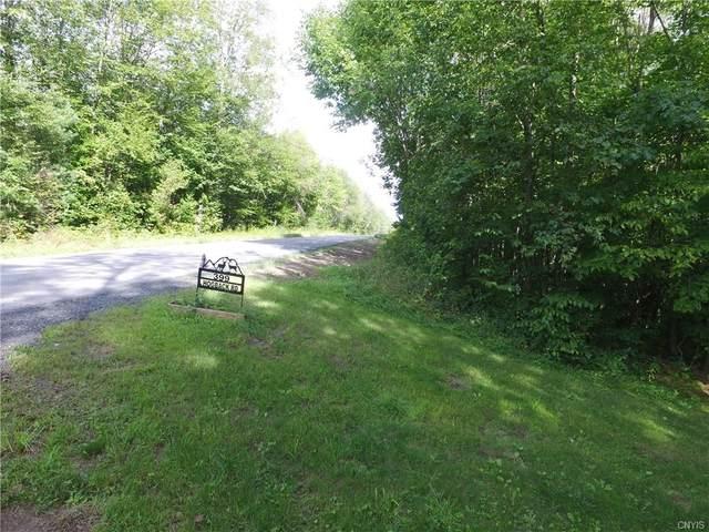 399 Hog Back Road, Orwell, NY 13144 (MLS #S1345961) :: Serota Real Estate LLC