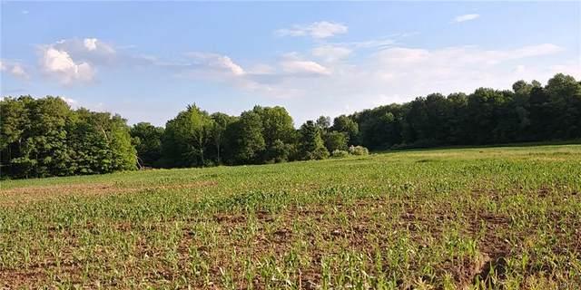 230 acres Dean Creek Road, Spencer, NY 14883 (MLS #S1346092) :: Robert PiazzaPalotto Sold Team