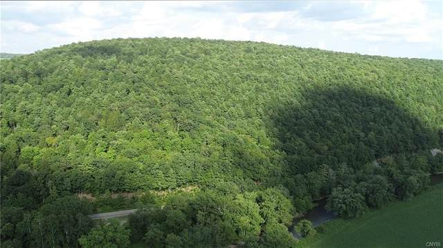 7338 &  7345 Nys Route 79, Barker, NY 13746 (MLS #S1346110) :: BridgeView Real Estate