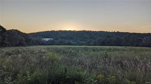 0 E Lake Road, Madison, NY 13346 (MLS #S1348109) :: BridgeView Real Estate