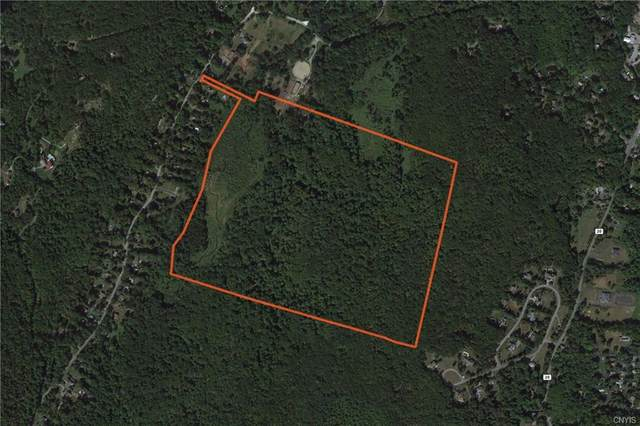 110 acres Sprout Brook Road, Putnam Valley, NY 10579 (MLS #S1348839) :: Robert PiazzaPalotto Sold Team