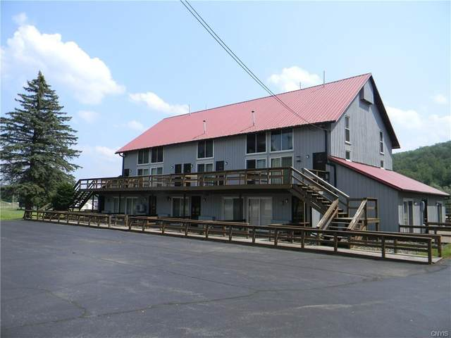 1912 State Route 392 #16, Virgil, NY 13045 (MLS #S1349389) :: Robert PiazzaPalotto Sold Team