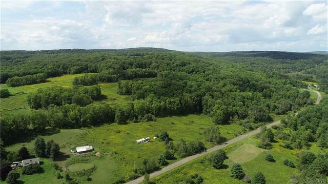 27 acres Blower Road, Guilford, NY 13780 (MLS #S1362007) :: TLC Real Estate LLC