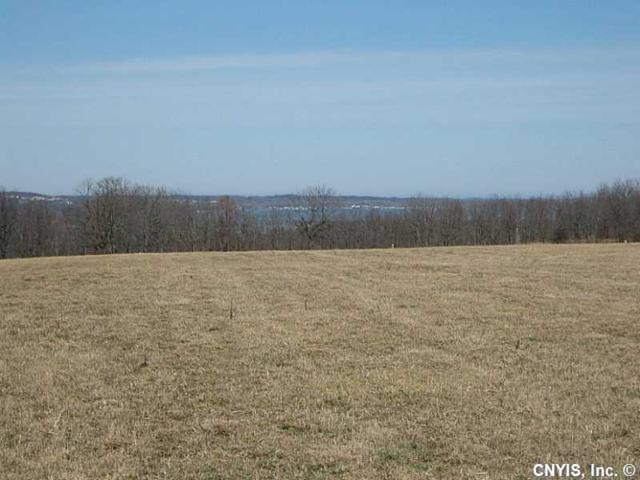 00 Twitchell Road, Gorham, NY 14461 (MLS #S349655) :: Thousand Islands Realty
