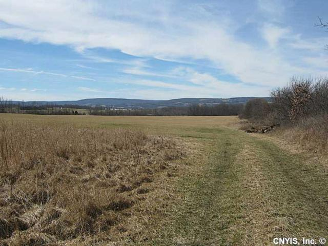 00 Arnold Road, Gorham, NY 14461 (MLS #S349666) :: Thousand Islands Realty
