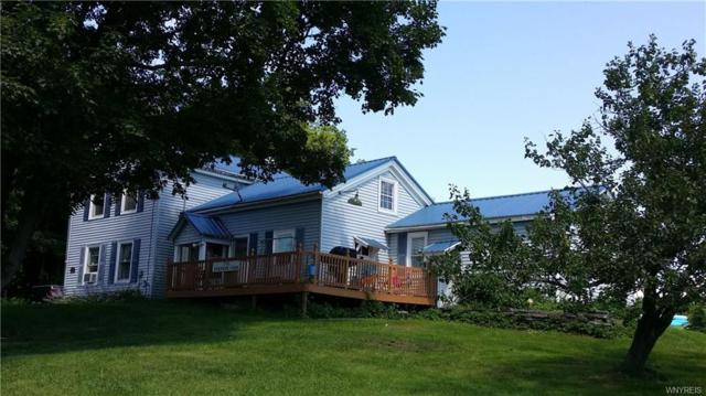 7938 Centerville Road, Hume, NY 14735 (MLS #B1062939) :: The Chip Hodgkins Team