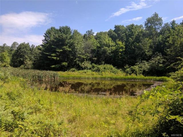 6028 Belvedere/Black Road, Belfast, NY 14711 (MLS #B1065882) :: The CJ Lore Team | RE/MAX Hometown Choice