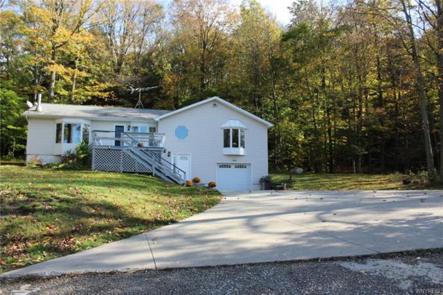 6503 Ashford Hollow Road, Ashford, NY 14171 (MLS #B1080785) :: BridgeView Real Estate Services