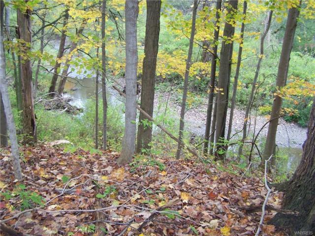 16 acres Hunters Creek Road, Holland, NY 14139 (MLS #B1081738) :: The Rich McCarron Team