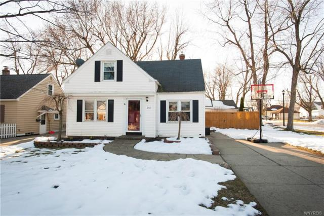 250 S Huxley Drive S, Cheektowaga, NY 14225 (MLS #B1104888) :: The Rich McCarron Team