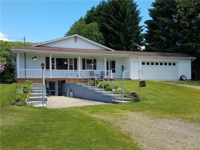 9545 Beulow Hill Road, New Albion, NY 14719 (MLS #B1123017) :: The Rich McCarron Team