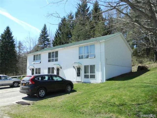6050-6062 Ashford Hollow Road, Ashford, NY 14171 (MLS #B1126340) :: BridgeView Real Estate Services