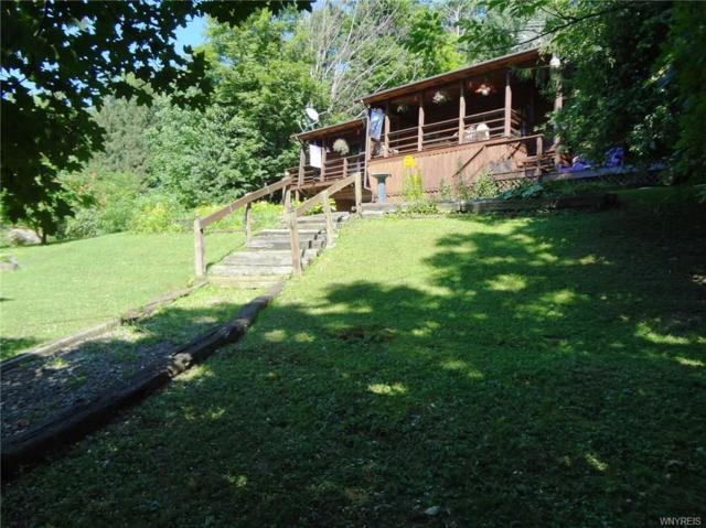 9344 Potter Hill Road, New Albion, NY 14719 (MLS #B1132301) :: The CJ Lore Team | RE/MAX Hometown Choice