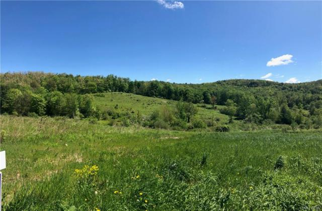 00 Union Valley Rd Road, Hinsdale, NY 14760 (MLS #B1143604) :: Updegraff Group
