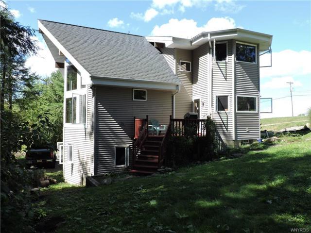 9395 Darien Road, Colden, NY 14170 (MLS #B1146629) :: Updegraff Group