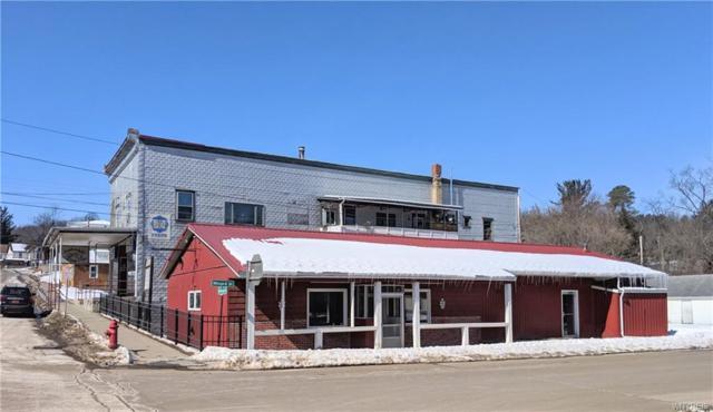 53 W Main & 10 Minard Street, Hume, NY 14745 (MLS #B1176429) :: The Chip Hodgkins Team