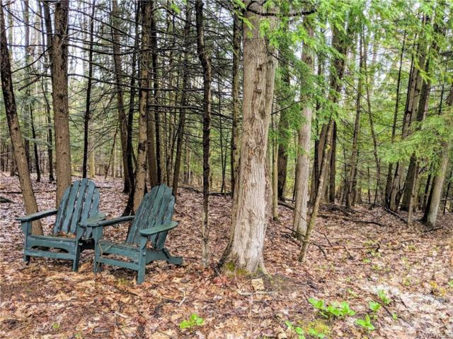0 Old Russell Hill Road, Caneadea, NY 14717 (MLS #B1176676) :: Updegraff Group
