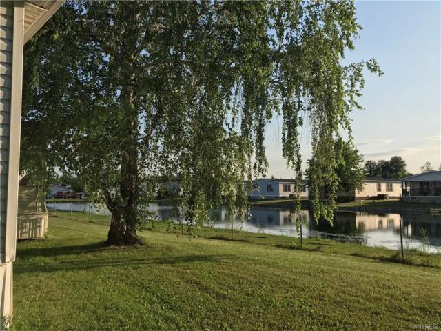 65 Pocono Park, Newstead, NY 14001 (MLS #B1214037) :: 716 Realty Group