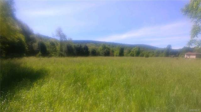 569 Route 446, Hinsdale, NY 14727 (MLS #B1238601) :: Lore Real Estate Services