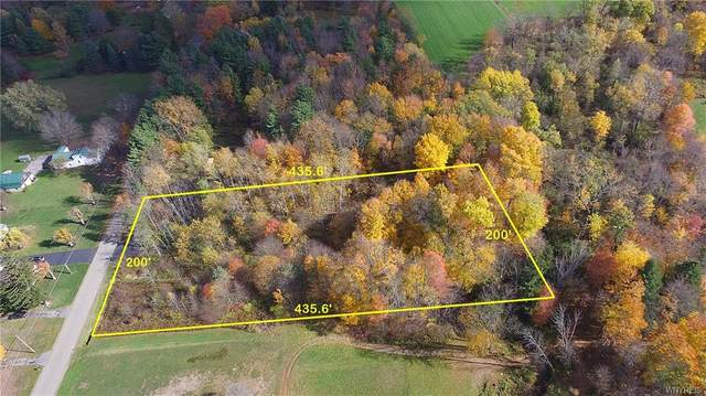 2247 New Jerusalem Road, Eden, NY 14057 (MLS #B1280544) :: Avant Realty