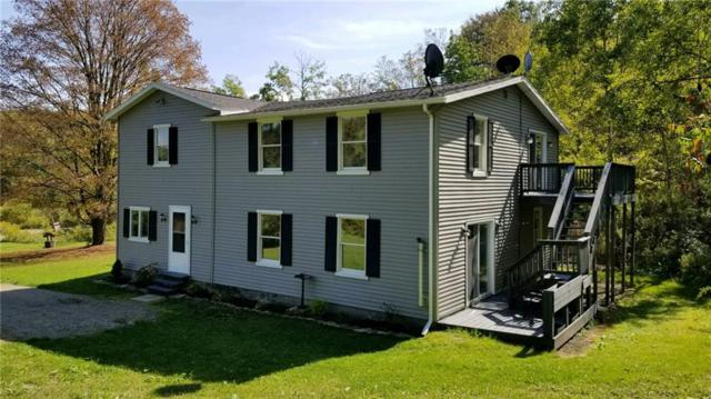 3361 Brown Hill Road, Cohocton, NY 14826 (MLS #R1069413) :: The Chip Hodgkins Team