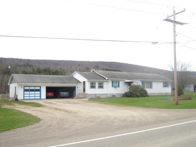3504 County Road 9, Scio, NY 14880 (MLS #R1087351) :: Thousand Islands Realty