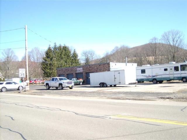 2006 State Route 19 S - Stannards Rd, Wellsville, NY 14895 (MLS #R1095060) :: The Chip Hodgkins Team