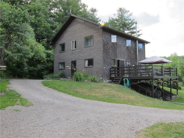 5817 E Valley Road, Alfred, NY 14803 (MLS #R1105780) :: Robert PiazzaPalotto Sold Team