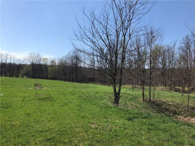 10 Carolina Drive, Mendon, NY 14534 (MLS #R1113952) :: Updegraff Group