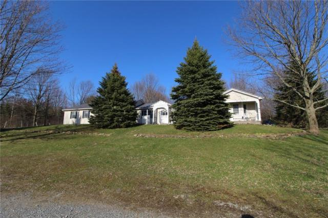 6327 Woodland Dr, Conesus, NY 14435 (MLS #R1117983) :: The CJ Lore Team | RE/MAX Hometown Choice