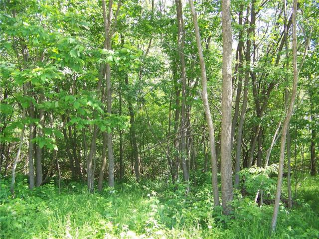 5876 East Lake Way  Lot 45 Way, Romulus, NY 14541 (MLS #R1129336) :: The Chip Hodgkins Team