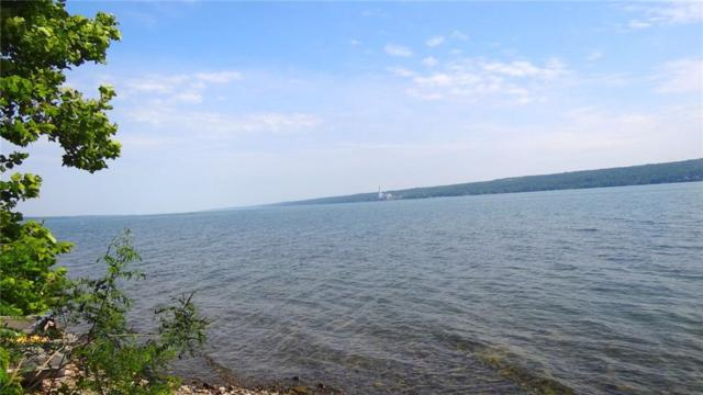 9587 State Route 89 Highway, Covert, NY 14847 (MLS #R1132961) :: The Rich McCarron Team