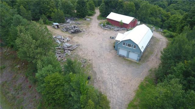 4043 State Highway 3, Fine, NY 13690 (MLS #R1140613) :: The Chip Hodgkins Team