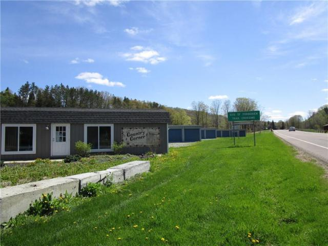 3534 County Rd 21 - Shovel Hollow Road, Andover, NY 14806 (MLS #R1142540) :: Lore Real Estate Services