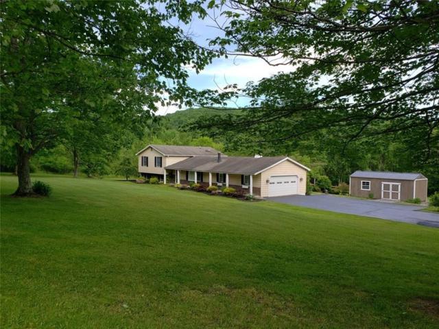3211 W Valley View Drive, Allegany, NY 14706 (MLS #R1198937) :: The Glenn Advantage Team at Howard Hanna Real Estate Services