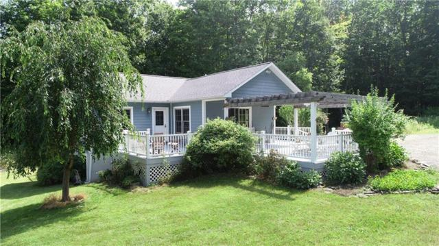 6937 Lawyer Road, Naples, NY 14512 (MLS #R1216396) :: 716 Realty Group
