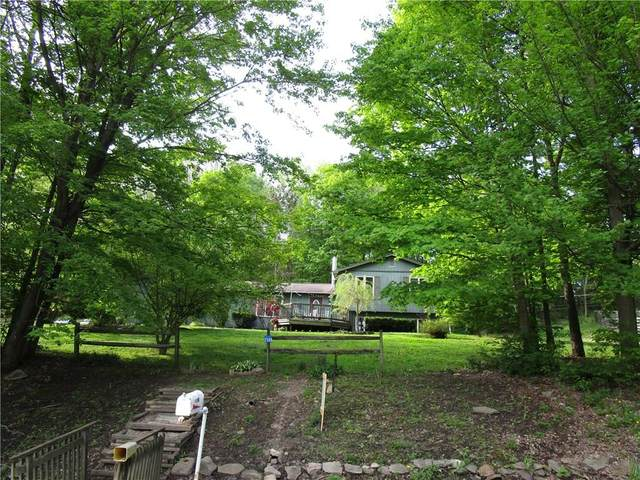 2588 Voorhees Hill Road, Wellsville, NY 14895 (MLS #R1257162) :: Lore Real Estate Services
