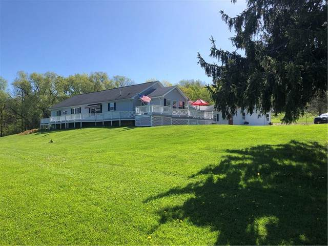 10076 Hyatt Hill Road, Wayne, NY 14837 (MLS #R1268828) :: Lore Real Estate Services