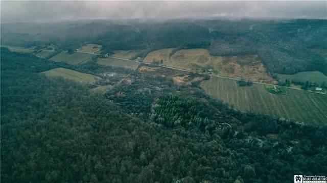 Lot B Thornton, Charlotte, NY 14723 (MLS #R1311952) :: Serota Real Estate LLC
