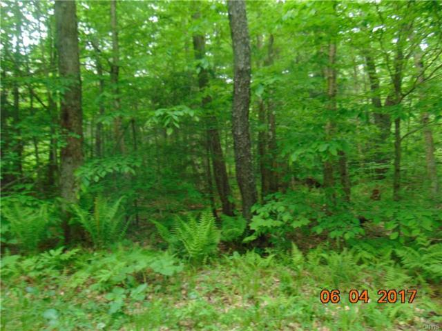 00 Gossner Road #2, Annsville, NY 13471 (MLS #S1020104) :: Updegraff Group