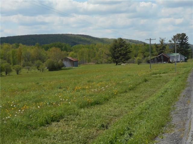 00 State Route 26, Turin, NY 13325 (MLS #S1021242) :: Thousand Islands Realty
