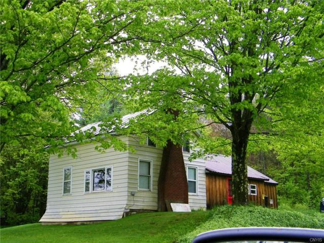 1573 Osceola Road, Osceola, NY 13316 (MLS #S1043020) :: Thousand Islands Realty
