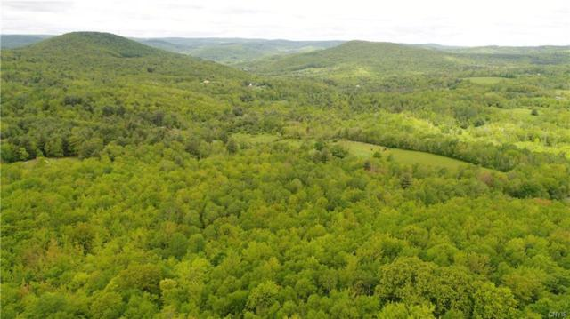 193 E Hollow Road, Petersburg, NY 12138 (MLS #S1051027) :: Thousand Islands Realty