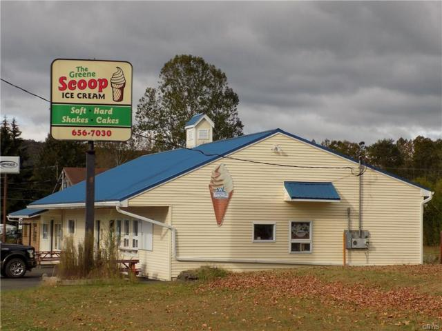 1159 State Hwy 12, Greene, NY 13778 (MLS #S1083020) :: MyTown Realty