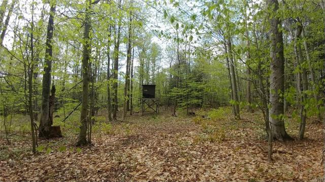 3752 Muller Hill Road, Georgetown, NY 13072 (MLS #S1118968) :: The Chip Hodgkins Team