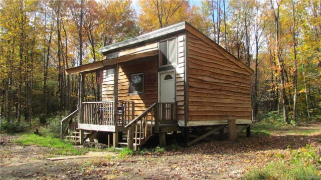 5323 Ziegler Road, Leyden, NY 13309 (MLS #S1144943) :: BridgeView Real Estate Services