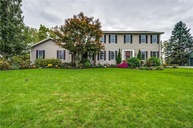 8491 Woodbox Road, Manlius, NY 13104 (MLS #S1154879) :: Updegraff Group