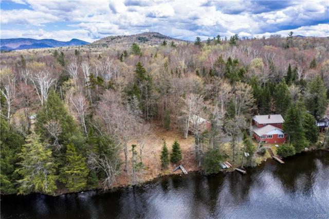 337 Big Brook Road, Indian Lake, NY 12842 (MLS #S1158680) :: BridgeView Real Estate Services