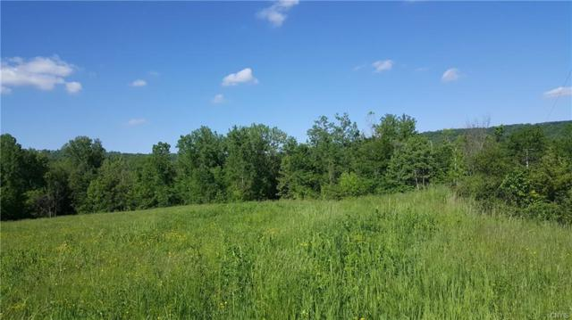 2340 Tully Farms Road, Lafayette, NY 13084 (MLS #S1161804) :: 716 Realty Group