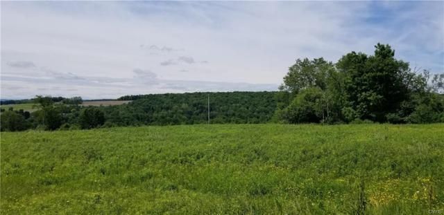 00 Tamarack Lane, Homer, NY 13077 (MLS #S1164357) :: TLC Real Estate LLC